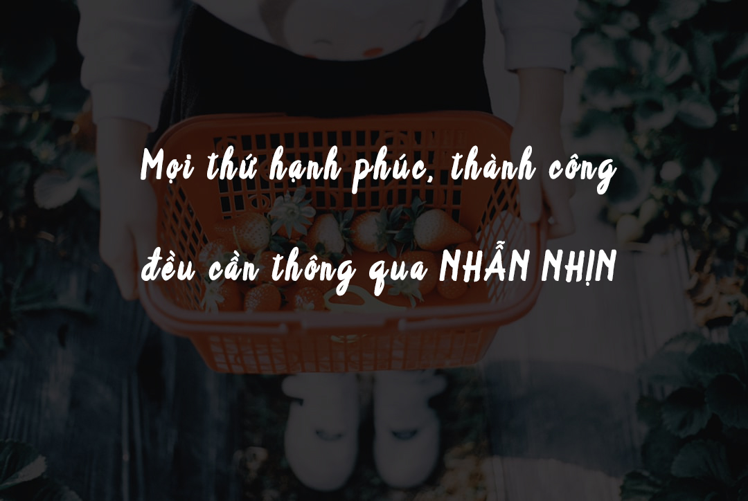 VOH-Cham-Ngon-Song-6
