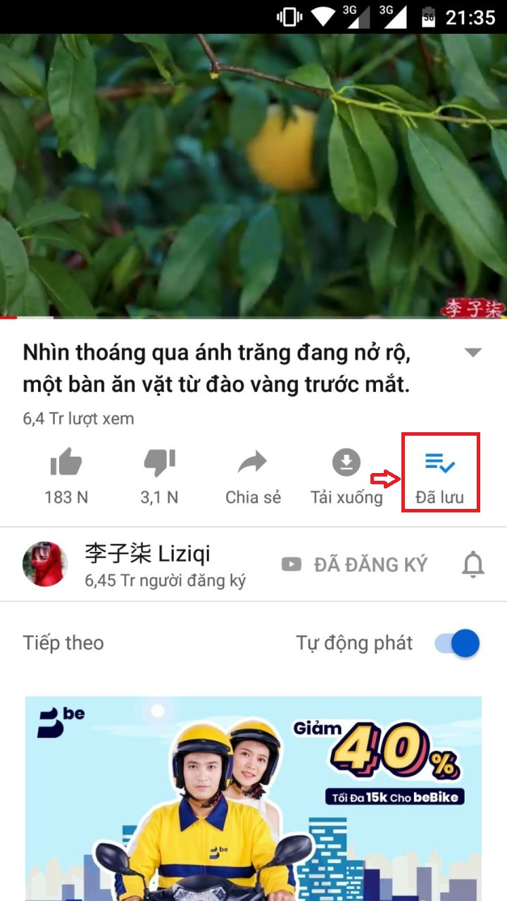voh.com.vn-cach-cay-view-6