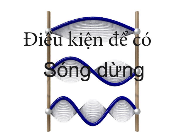 voh.com.vn-song-dung-1