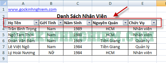 voh.com.vn.cach-dung-ham-filter-trong-excel-anh-1