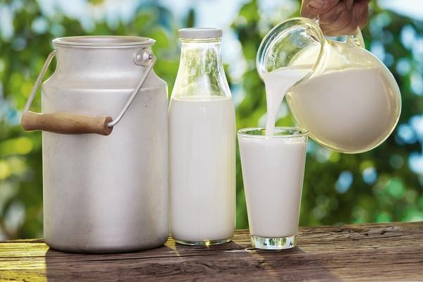Sữa tươi sử dụng trong vòng 3 ngày là tốt nhất