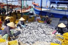 Kiểm tra việc khai thác thủy sản trên biển và tại cảng cá của TPHCM