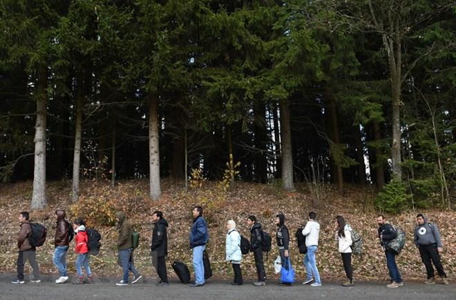 Người tị nạn, nhập cư