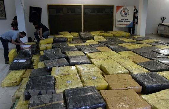 Paraguay tịch thu 170 tấn cần sa ở biên giới Brazil