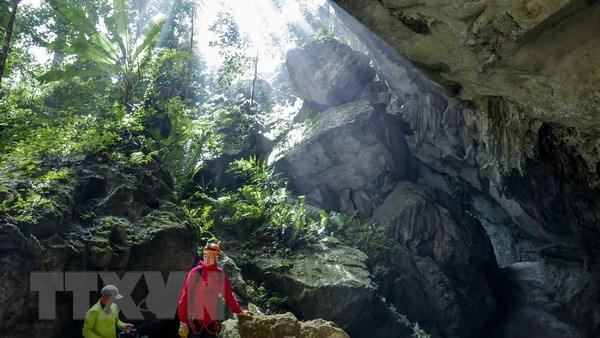 Phong Nha-Kẻ Bàng, hang động, Sơn Đoòng