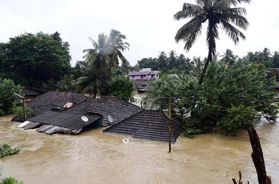 Lũ lụt ở Ấn Độ, 79 người chết