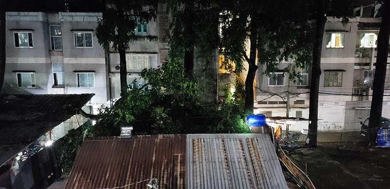 nhánh cây xuyên thủng nhà dân