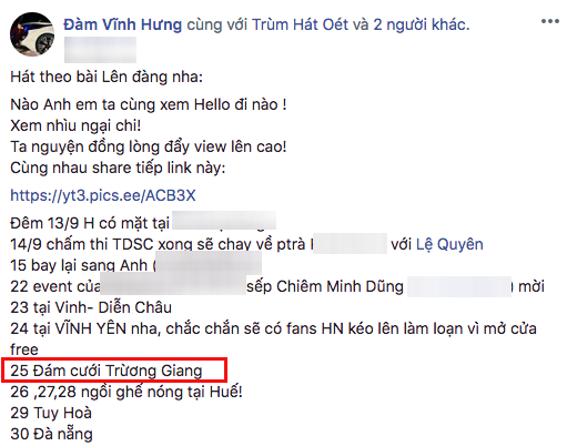 VOH-To-My-trinh-dien-trong-dam-cuoi-Truong-Giang-3