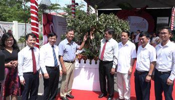 Hơn 400 tấn vải thiều VietGAP được bán tại hệ thống bán lẻ Saigon Co.op