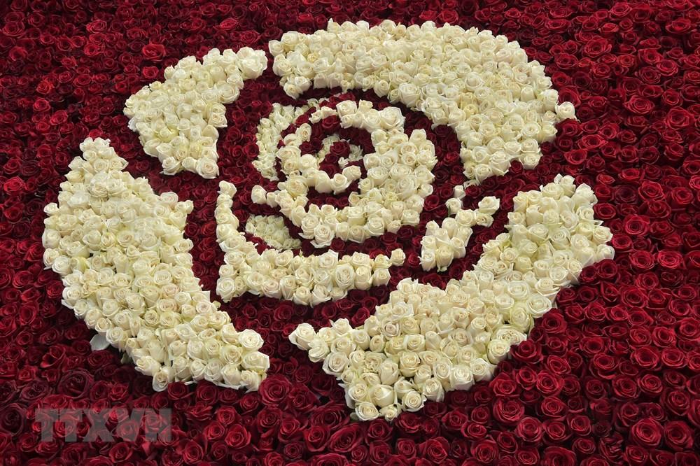 Mặt trên của Kim tự tháp làm từ hoa hồng. (Ảnh: AFP/TTXVN)