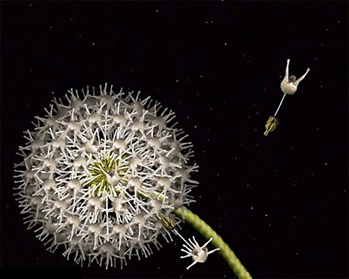 Người mẫu khoả thân tạo thành ảnh hoa tuyệt đẹp